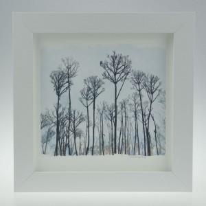 'Seed Head Landscape'