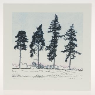 'Four Winter Pines'-greeting card-RSPB The Lodge