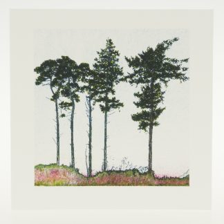 'Five Spring Pines'-greeting card-RSPB The Lodge