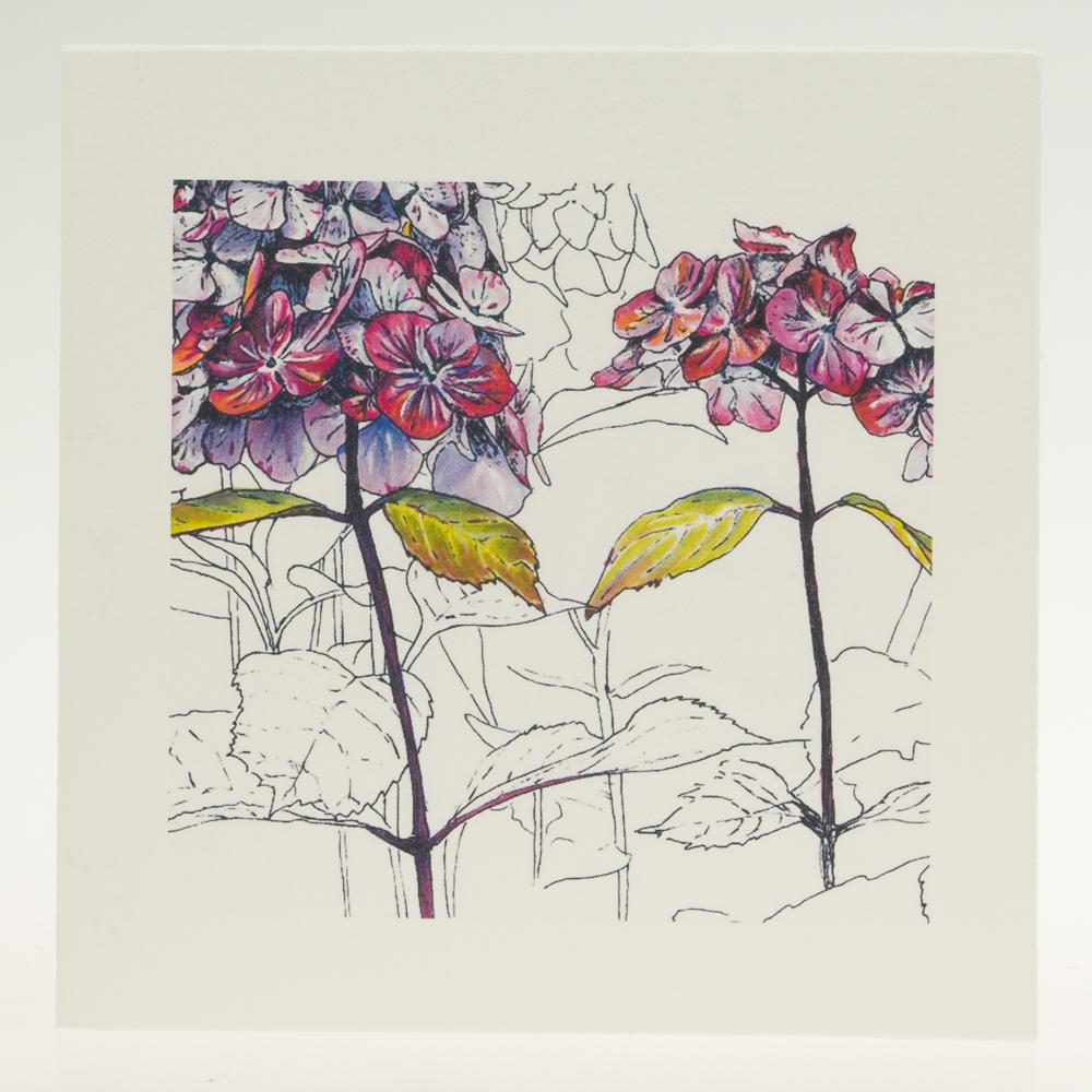 'Purple Hydrangea' centre-greeting card-Stoneywell Cottage