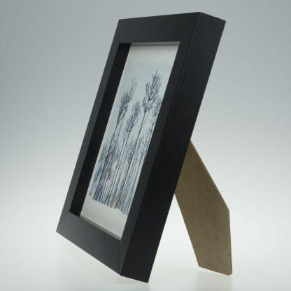 'Seed Head Landscape'-framed print -Pensthorpe Natural Park