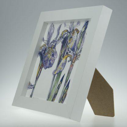 'Purple Iris'-framed print -Stoneywell Cottage