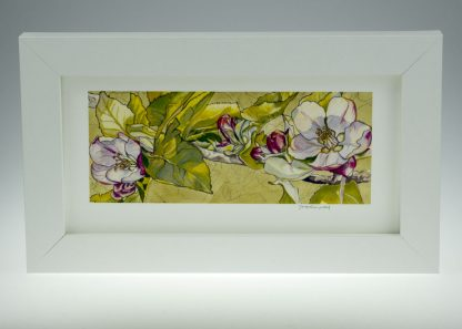 'Apple Blossom on Pastel'-framed print -Stoneywell Cottage