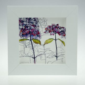 'Purple Hydrangea' centre-framed print -Stoneywell Cottage