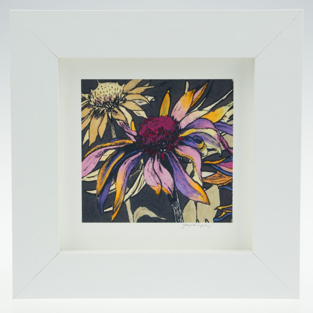 Echinacea on Umber-Framed Prints - Small Square-Pensthorpe Natural Park