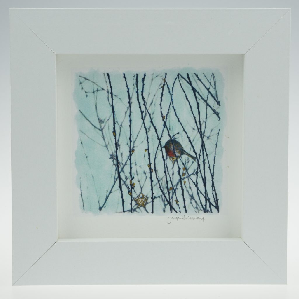 'Garden Robin on Blue'-framed print -Artists Garden in January