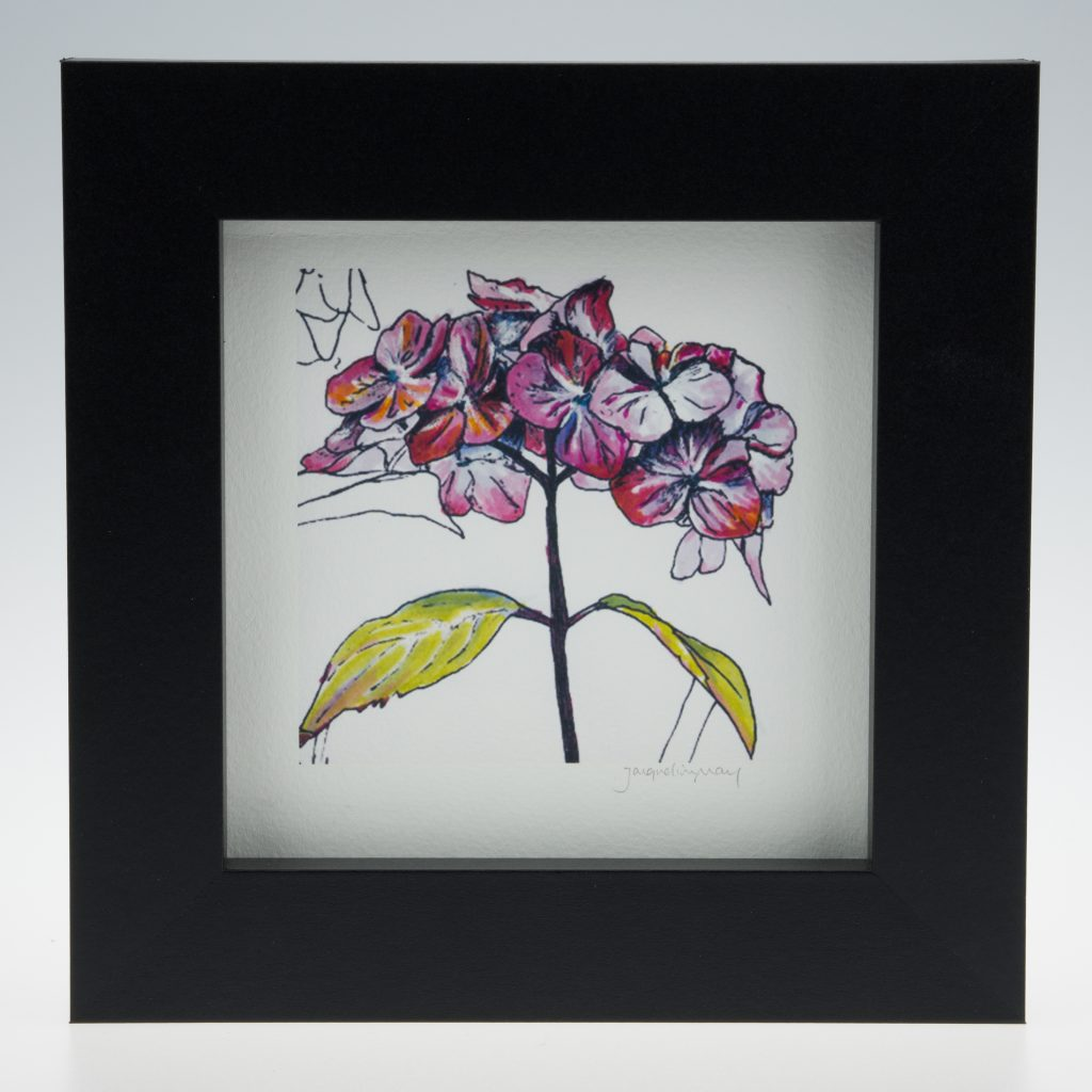 'Purple Hydrangea' bloom-framed print -Stoneywell Cottage