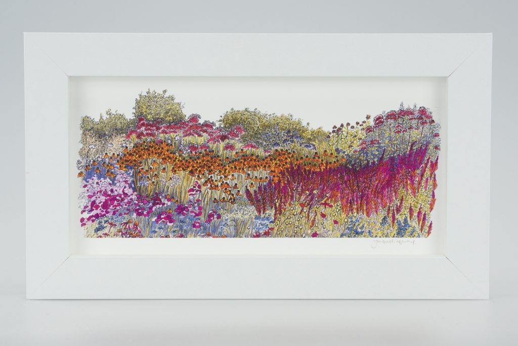 Millennium Garden-Medium Long-Framed Prints-Pensthorpe Natural Park