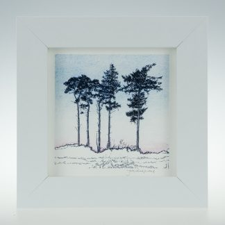 'Five Winter Pines'-framed print -RSPB The Lodge
