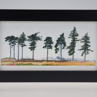 'Nine Spring Pines'-Framed print -RSPB The Lodge