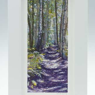 Unknown Wood -Medium Long-Framed Prints-Scottish Wood