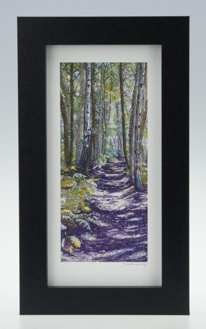 Unknown Wood -Medium Long-Framed Prints-Scottish Wood