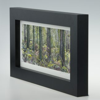 Bracken Wood-Medium Long-Framed Prints-Pensthorpe Natural Park