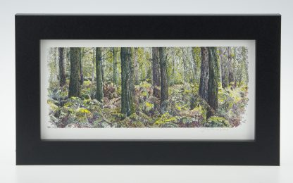 Bracken Wood-Medium Long-Framed Prints-Pensthorpe Natural Park