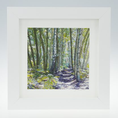 'Unknown Wood' -framed print -A Scottish Wood