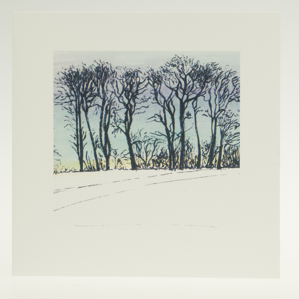 'Upton Trees-Blue Sky'-greeting card-Upton House