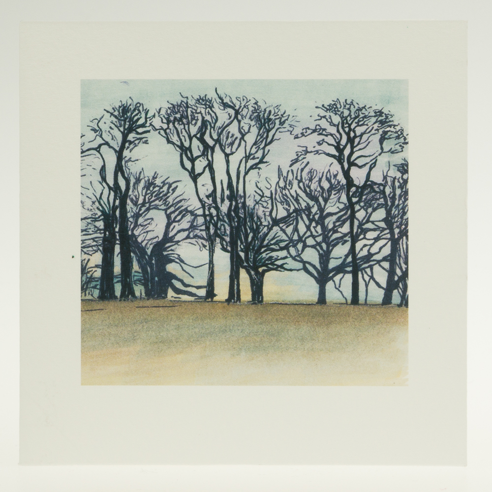 'Upton Trees-Full Colour'-greeting card-Upton House