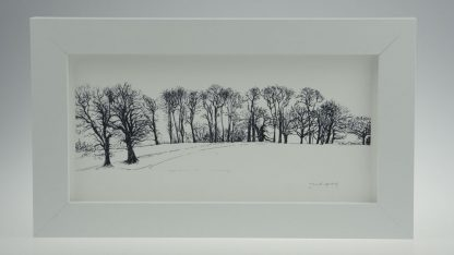 'Upton Trees-Black & White'-framed print -Upton House