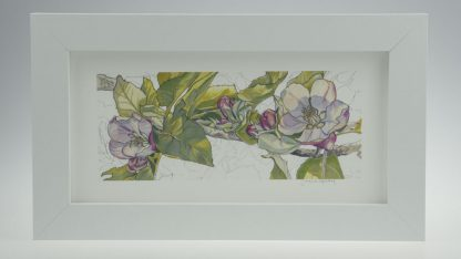 'Apple Blossom'-Framed print -Stoneywell Cottage