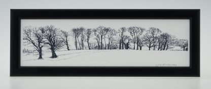 Upton Trees-Black & White-Framed Prints-Upton House