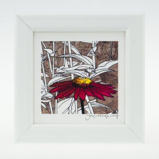 'Red Echinacea'-detail-framed print -Pensthorpe Natural Park