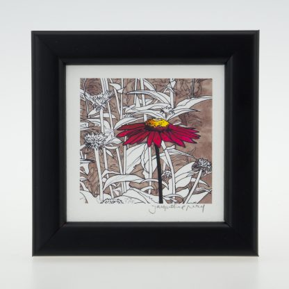 'Red Echinacea'-framed print -Pensthorpe Natural Park