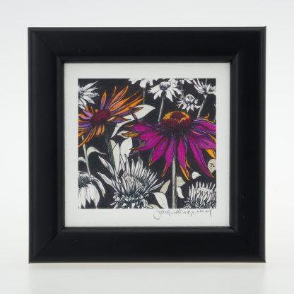 'Pink Echinacea'-framed print -Pensthorpe Natural Park