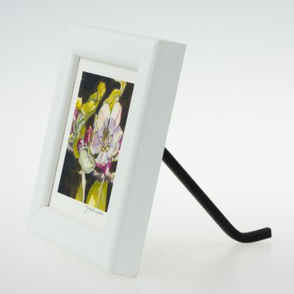 Apple Blossom on Umber' - Framed Print -Stoneywell Cottage