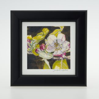 Apple Blossom on Umber' - Framed Print -Stoneywell Cottage