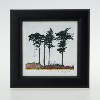 'Five Spring Pines'-framed print -RSPB The Lodge