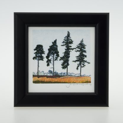 'Four Spring Pines'-framed print -RSPB The Lodge