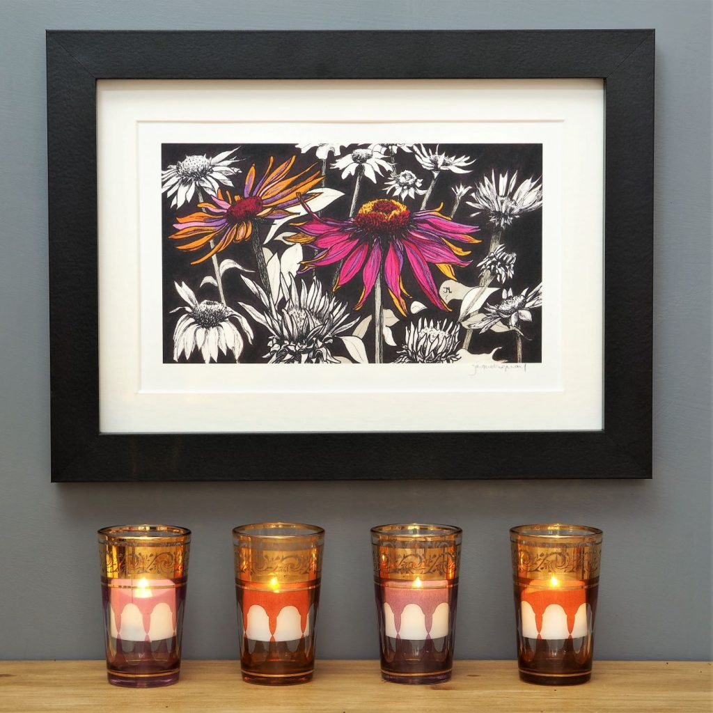 'Pink Echinacea' SMALL mounted print