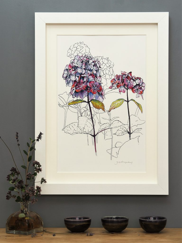 'Purple Hydrangea' MEDIUM mounted print