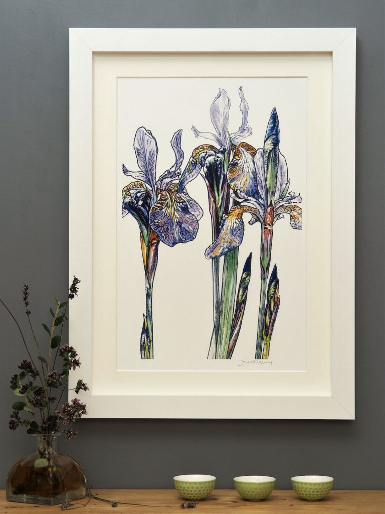 'Purple Iris' portrait MEDIUM mounted print