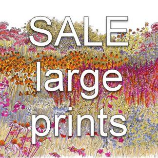 SALE Larger Prints